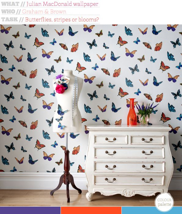 Flutterby wallpaper by Julian MacDonald for Graham and Brown: Accent Wall