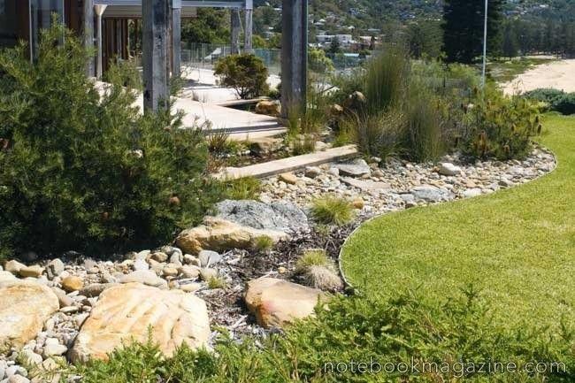 Australian water-wise planting image 18