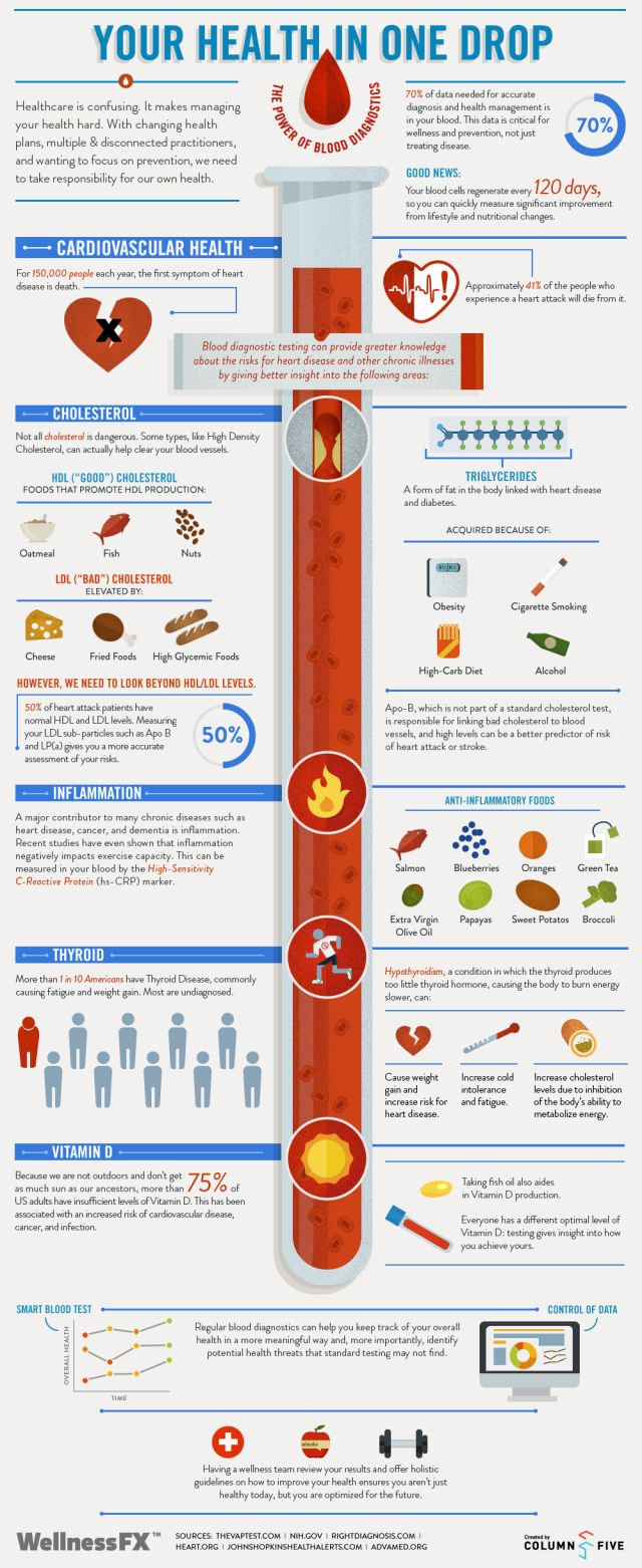 18 best blood infographics images on pinterest blood donation blood infographic blood tests assist health professionals in diagnosing a number of health conditions and diseases such as hivaids cancer diabetes nvjuhfo Image collections