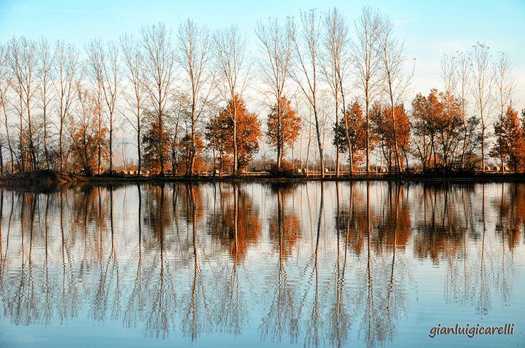 Autunno sui laghetti. Pic: Gianluigi Carelli #turismo #Lomellina #autunno #natura #ambiente #turismo