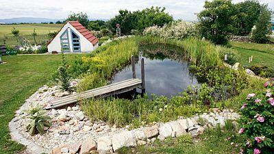 Půvabné koupací jezírko s opravdu pořádně zarostlou rostlinnou zónou. Ale v článku majitelé zahrady psali, že mají ještě jedno menší jezírko a jezírka jsou propojená, nevím, jestli to má vliv na čistící funkci.