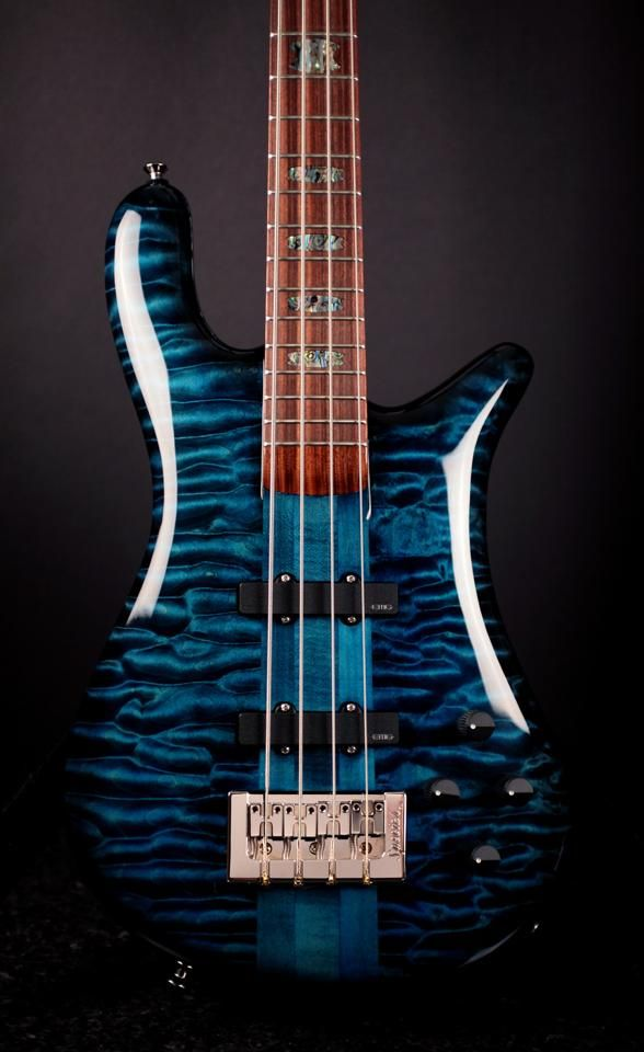 1000 Images About Spector Basses On Pinterest