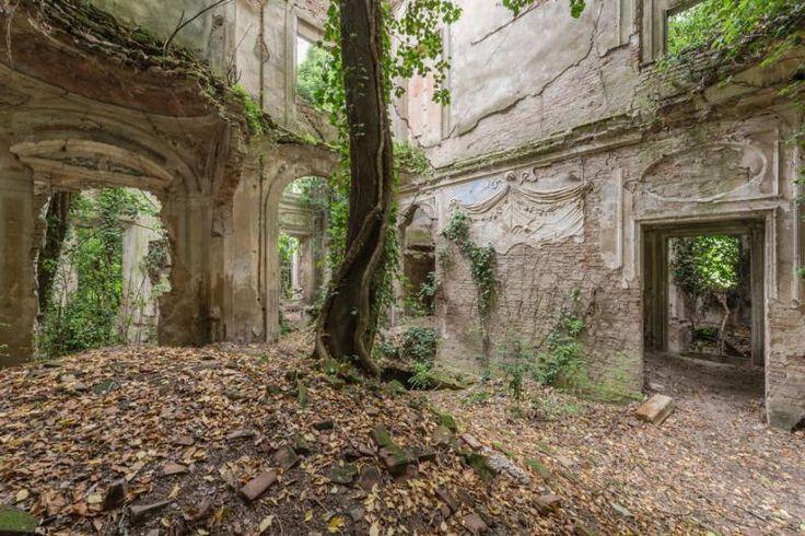 Elhagyott épület | Fotó: Romain Veillon via boredpanda.com
