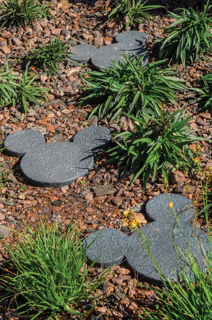 Mickey Mouse stepping stone path through landscaping. #disney #mickeymouse #landscaping #housetrends