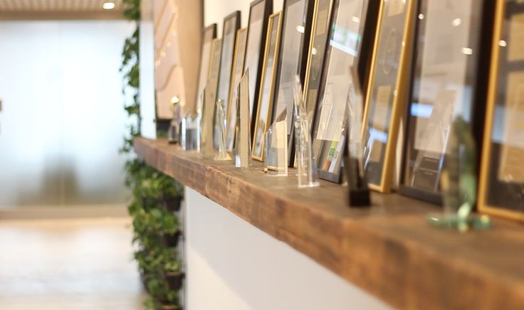 In a recent office fit out, we installed this 8 meter long recycled timber shelf to showcase the many awards and accolades of the organisation. . . #timberrevival #commercialfitoutmelbourne #floatingtimbershelf #officedesignmelbourne #officefitout #recycledtimbermelbourne #timbershelving #reclaimedtimber #salvagedtimber #greyironbark #blackbutt #brushbox #northcoasttimbers #recycledtimber #recycledtimberdesign #timberindesign #wemakeoldtimbernew