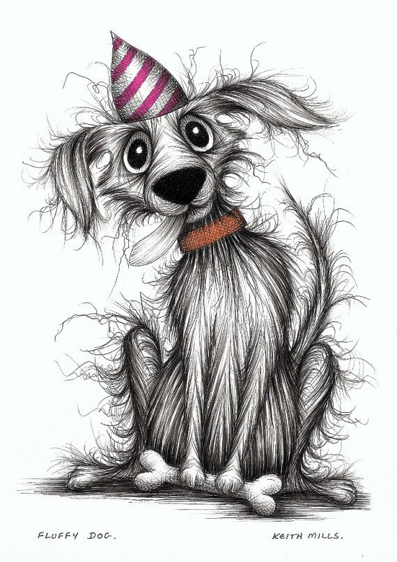 Fluffy Dog Happy Doggy With Treat Wearing Striped By