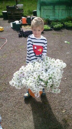 Flower boy!