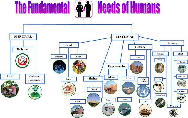 Fundamental Needs of Human
