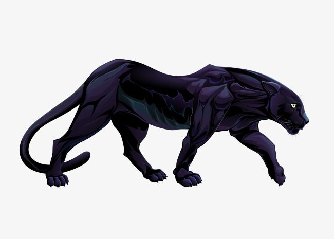 Vector Panthers Panther Clipart Decoration Animal Png Transparent Clipart Image And Psd File For Free Download Black Panther Drawing Panther Art Panther Tattoo