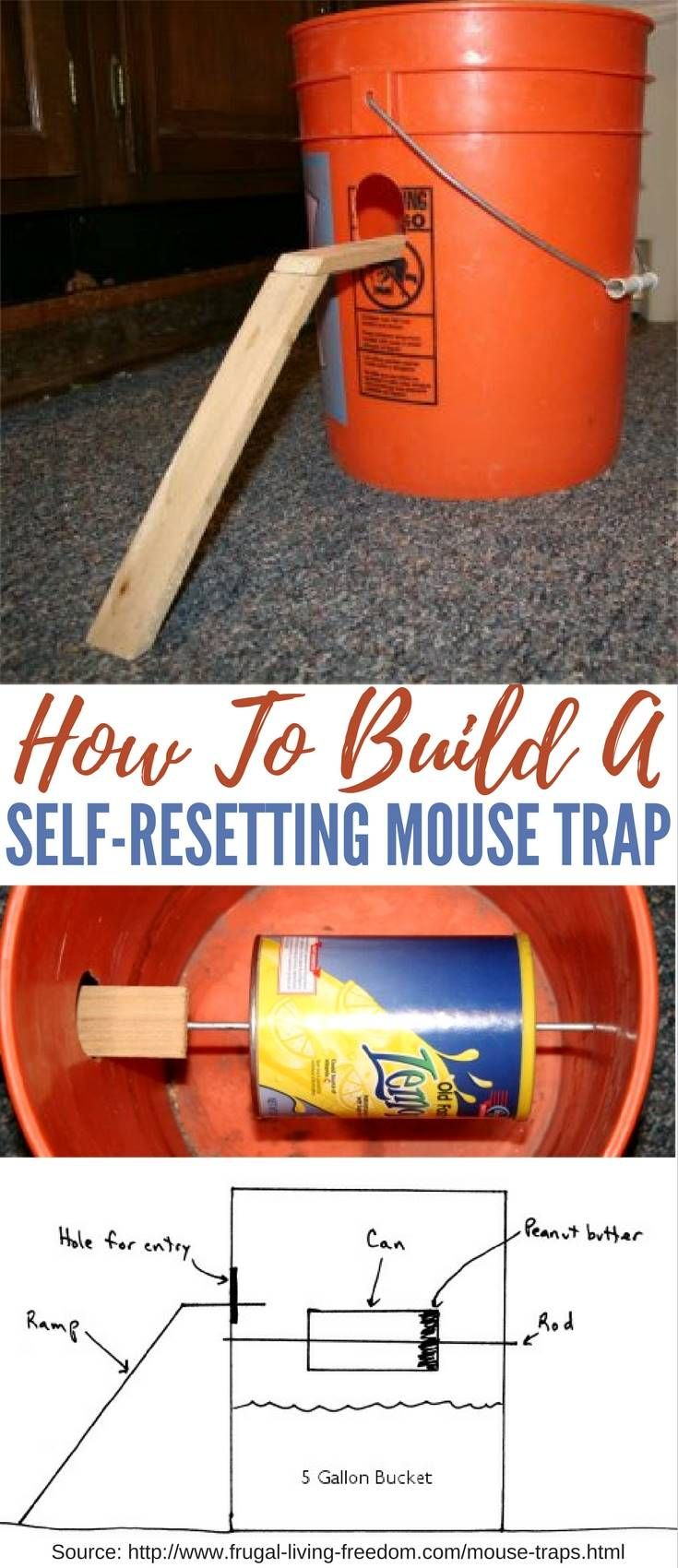 How To Build A Self-Resetting Mouse Trap — These 5-gallon bucket mouse traps are cheap and easy to build, easy to use and easy to service. I know the regular mouse traps are cheap but this trap can also catch rats too.