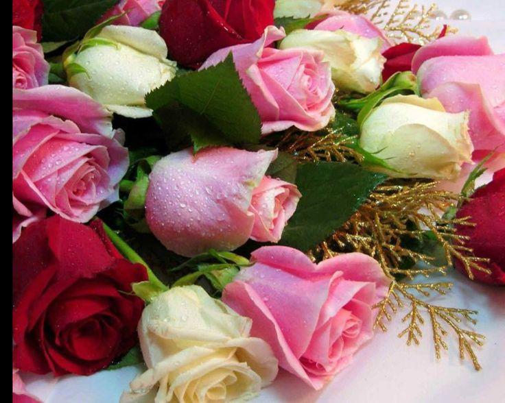 Rose Bouquet Flower HD Desktop Wallpaper