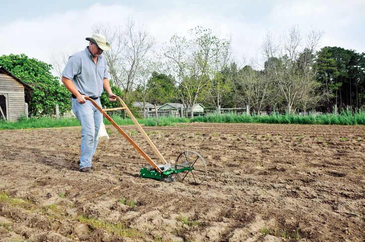 If you grow a large garden, at some point you're going to want a garden seed planter. This article breaks down which garden seed planter is best for your needs, with pros and cons of both the walk-behind seed planter and the stab-style seed planter. From MOTHER EARTH NEWS magazine.