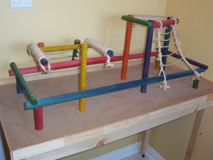 DIY parrot play stands/gyms