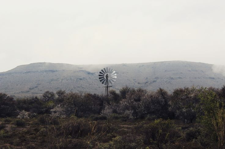 counting windmills  Karoo, South Africa Photo by Abigail Elliott Instagram: @reaction_poetique