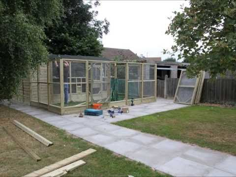 cosy designs for chicken houses. Wells Poultry build a chicken house 9 best Chicken Coop  The Dust Bath images on Pinterest