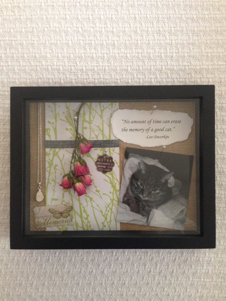 Cat memorial shadow box I made after losing my companion of 14 years. I included a locket necklace which holds his ashes.