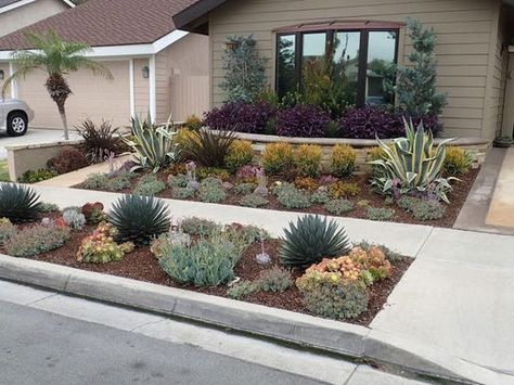 Drought Tolerant Landscaping Orange County, CA | Drought Resistant ...: