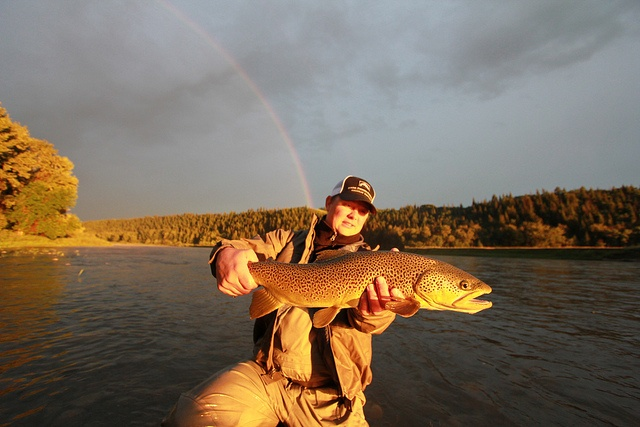 how to get a fishing license in alberta
