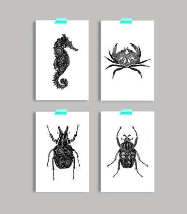 Lot de 4 cartes postales, noir & blanc format carte postale 10x15cm hippocampe/crabe scarabee / insecte  Elles sont imprimées par un professionnel, sur papier premium mat (l - 16853820