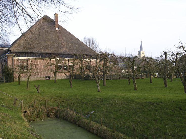 Boerderij in Benningbroek