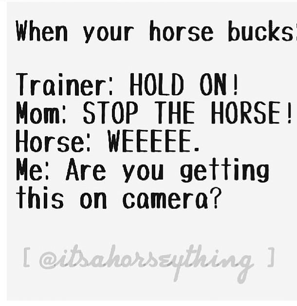 "When the Horse Starts to buck. or it would go more like: trainer: Sit up and relax! mom: you are never riding him again!  horse: well this is fun! Me: *feeling buck commin* ""dont do it!"", *during* ""damn it stop bucking"", *afterwards* ""that was fun, now dont do it again, ok back to work"""