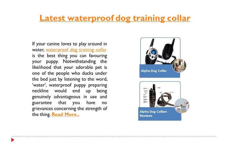The neckline brags of a non-obstructive layout with the objective that it doesn't demolish the improvement of your puppy. Around 100 levels of vibrations allow you to hold your canine's lead under check by moving the levels of results for his exercises.