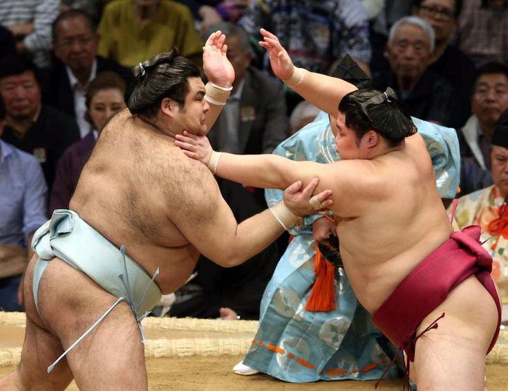 高安、大関とりへ「思った通りの相撲」遠藤に雪辱 #相撲