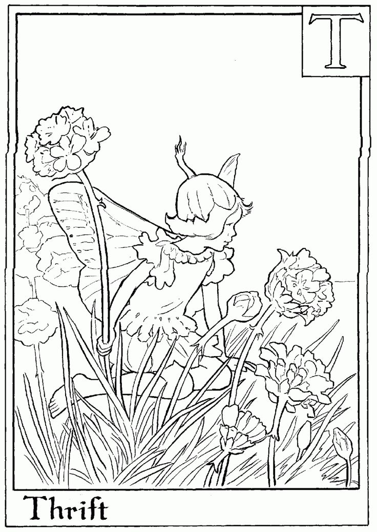 93 best Colouring Pages images on Pinterest Coloring books