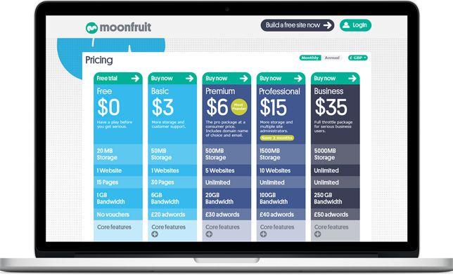 Method – Case Study – Moonfruit