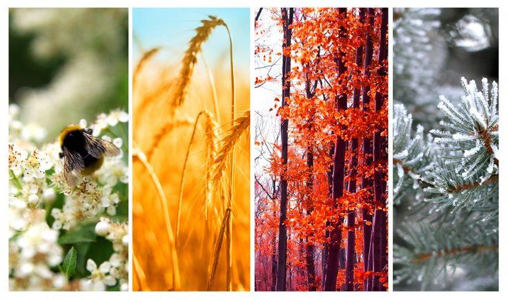 Ożyw zimę – postaw na kolory!