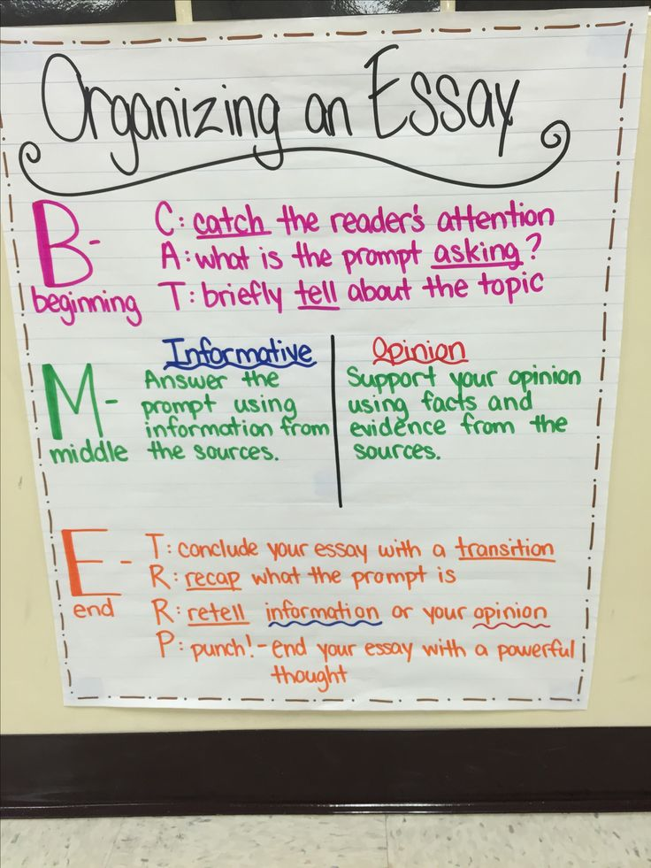 types of essays for 4th graders