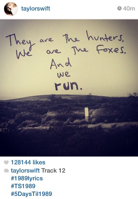 but no one can catch the fox