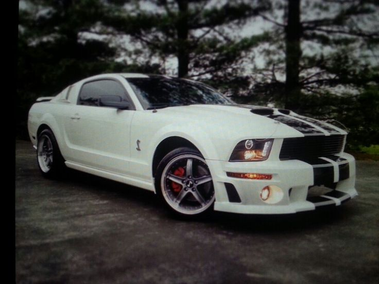 25 best ideas about 2005 Mustang on Pinterest  Mustangs Ford