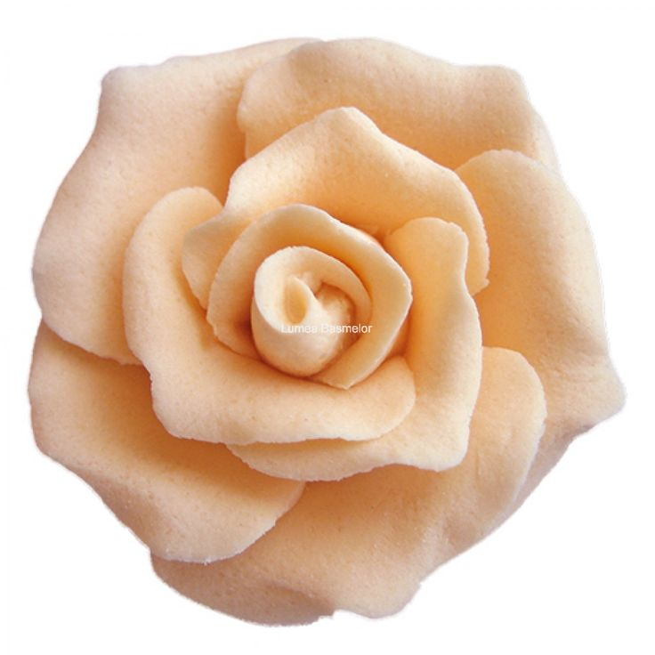 Trandafiri mici 42 buc culoarea piersica