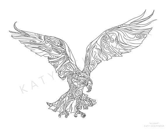 Hawk Zentangle Pattern Coloring Page For Adults Pattern