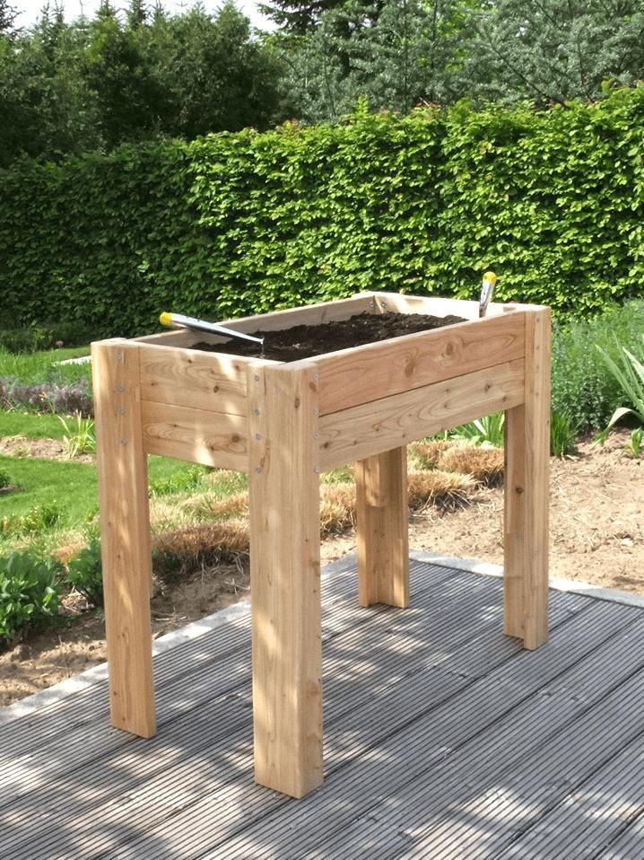 Tischbeet Zum Bepflanzen Balkon Pinterest Pflanzplan Hochbeet