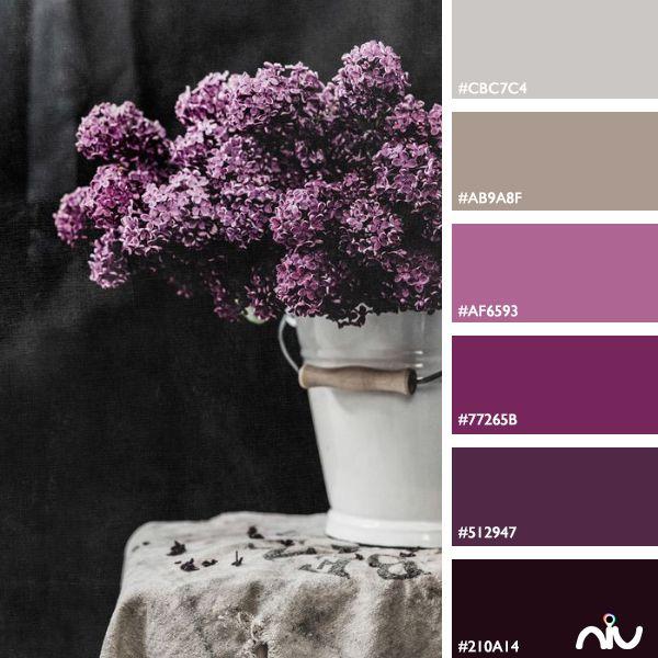 Flowers Color Palette