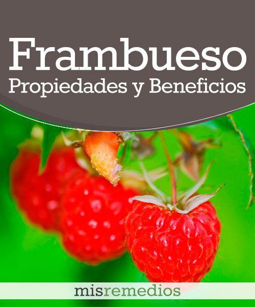 #Frambueso - Propiedades y Beneficios #PlantasMedicinales