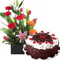 Tall Arrangement of Exotic flowers with 1Lb Black Forest Cake