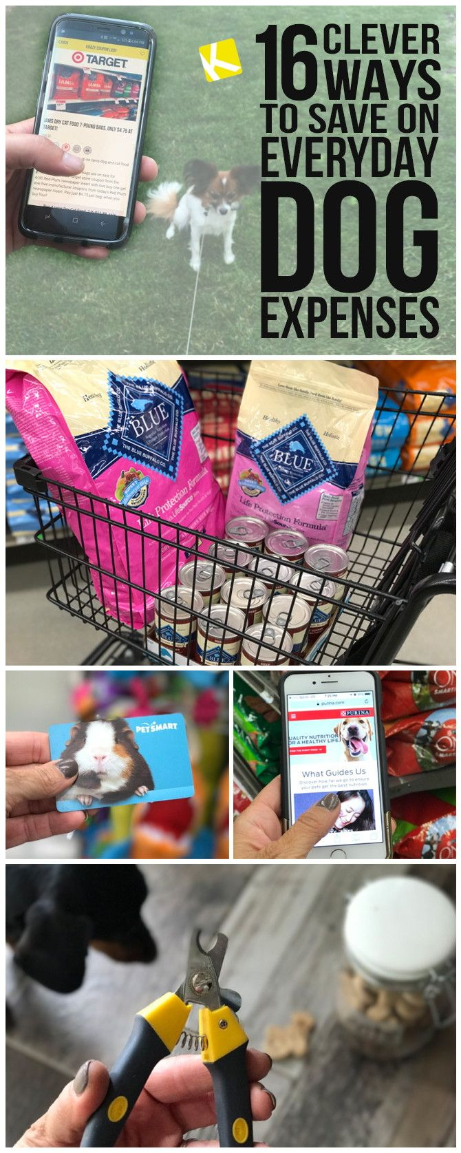 27 best the krazy coupon lady app images on pinterest budget 16 clever ways to save on everyday dog expenses fandeluxe Images