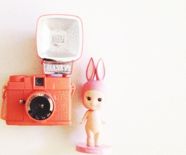 my little rabbit sonny bobing head 390 Baht.