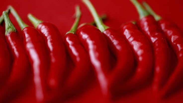 Manfaat Makanan Pedas Bagi Tubuh Yang Jarang Orang Ketahui