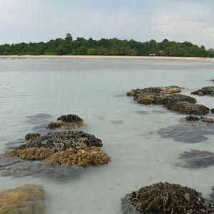 Pulau Semama