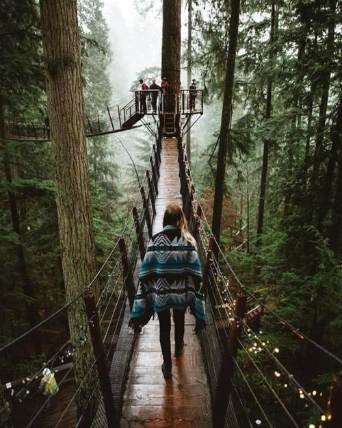 Walking on tree tops Vancouver BC Canada | Forrest... | #adventure #travel #wanderlust #nature #photography
