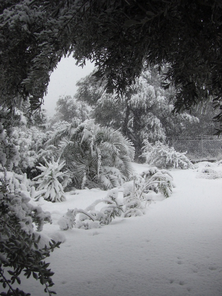 ... when it does snow on Crete, it really transforms the landscape into something surreal ...
