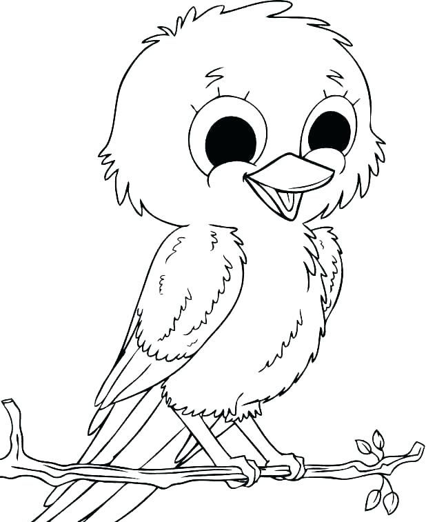 free bird coloring pages for your kids