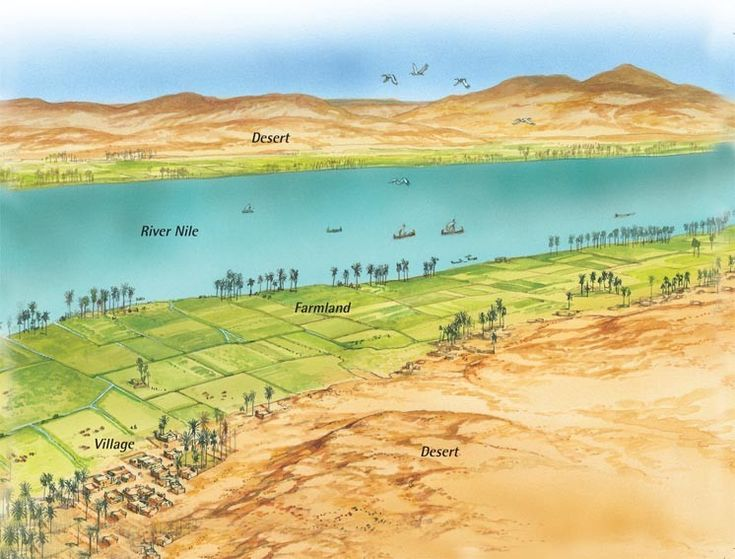 history of the river nile Nile river definition, a river in e africa, the longest in the world, flowing n from   word origin and history for nile river nile one of the world's oldest surviving.