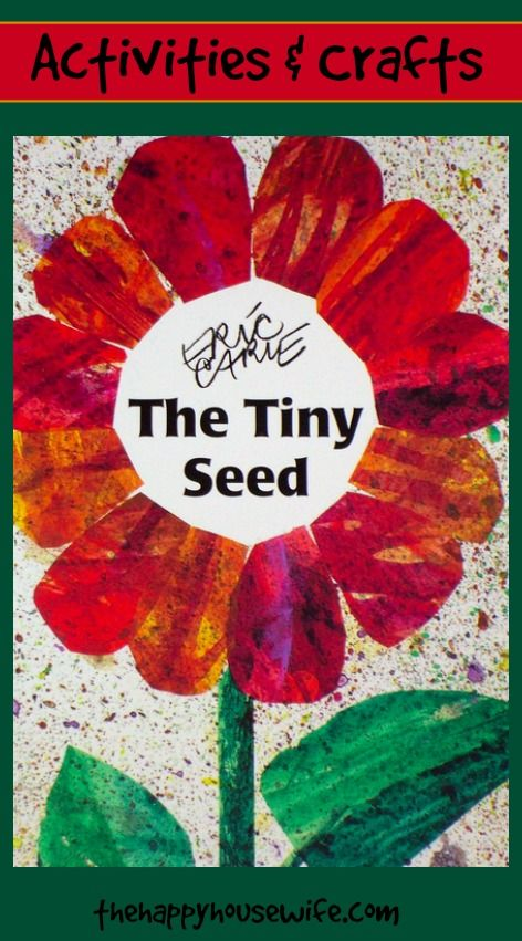 31 Days of Read-Alouds: The Tiny Seed ~ it's finally spring and this is a great book that details the life of a seed! | The Happy Housewife