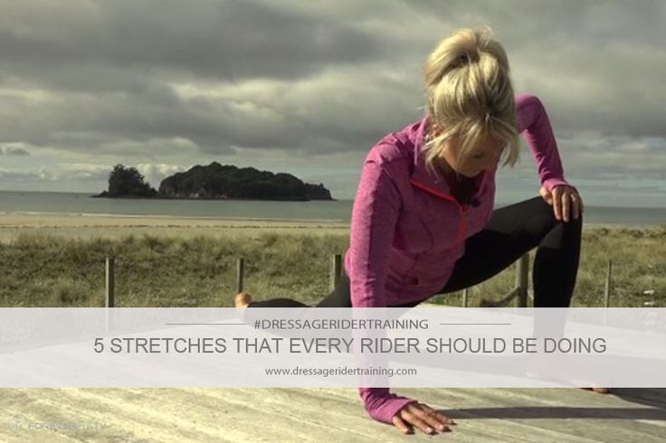 5 Stretches That Every Dressage Rider Should Do I don't know any reason this should be limited to Dressage riders. Lots of other info available at this page.