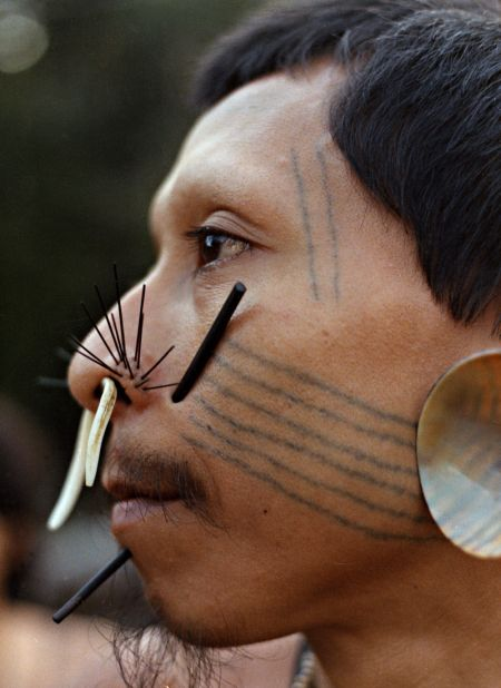 """Matse men traditionally placed """"whiskers"""" in tribal piercings extending upward on the upper lip. In addition, the """"whiskers"""" were not straw colored, instead they were black. The male ornaments were made out of the black veins of a growing palm trunk. Interestingly, younger men enhanced their appearance by using longer splinters than did older men."""